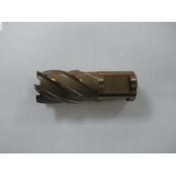 Alfra HSS Mag Drill Cutter 21mm