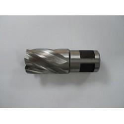 Alfra HSS Mag Drill Cutter 22mm